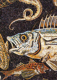 Roman mosaic from in house VIII.2.16 in Pompeii